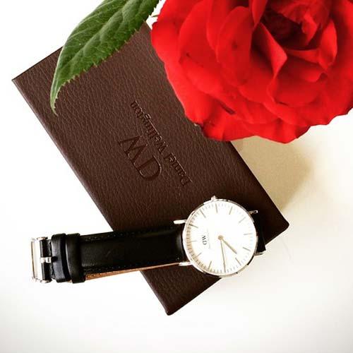 rose-1614267_960_720